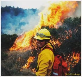 MacNeil on Perscribed Fire - MacNeil Lyons Images